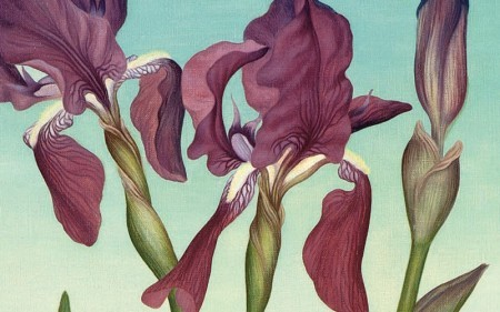 This work by Helen Lundeberg depicts bright purple irises