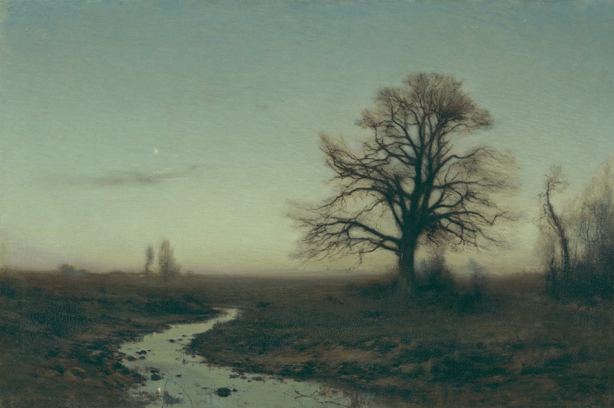 A landscape with a lonely tree on the right and river on the left.