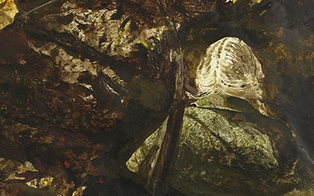 This detail shows a blond woman from behind. She is seen walking between falling leaves and wearing a cape coat