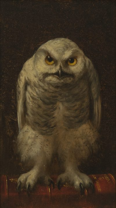 A white owl stares directly out at the painting's viewer.